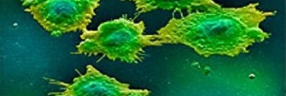Микоплазма, урогенитальная инфекция